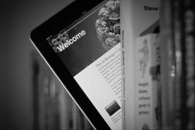 what ebook format does ibooks use