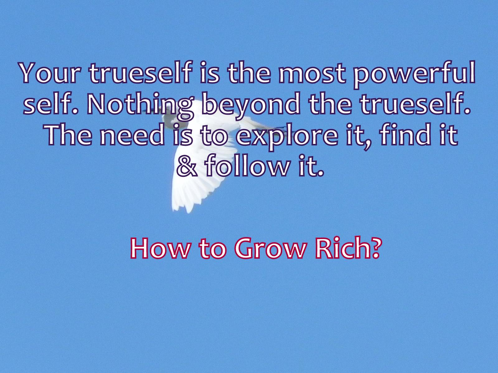 think and grow rich ebook pdf