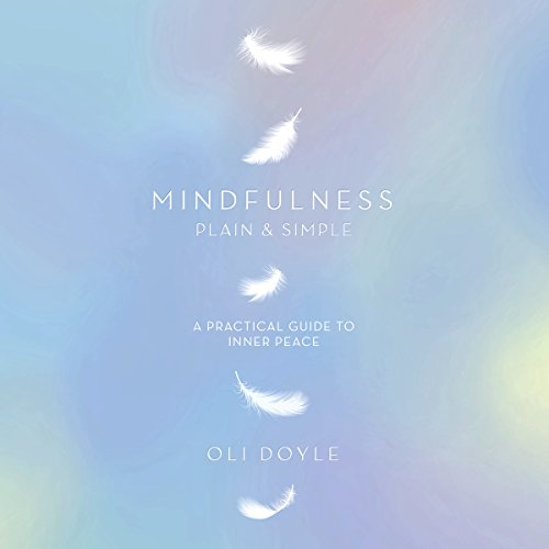 mindfulness in plain english ebook